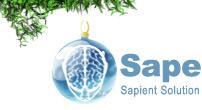 С новым годом sape.ru