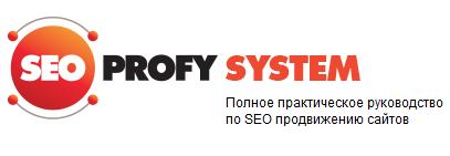 Полное практическое руководство по SEO продвижению сайтов SEO курс SeoProfy System